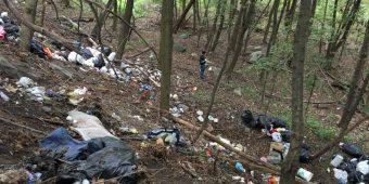Some of the trash found around the borough, September 2016.  Photo:  Bobby Hughes.